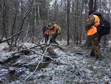 В лесах области с начала года спасен 21 человек