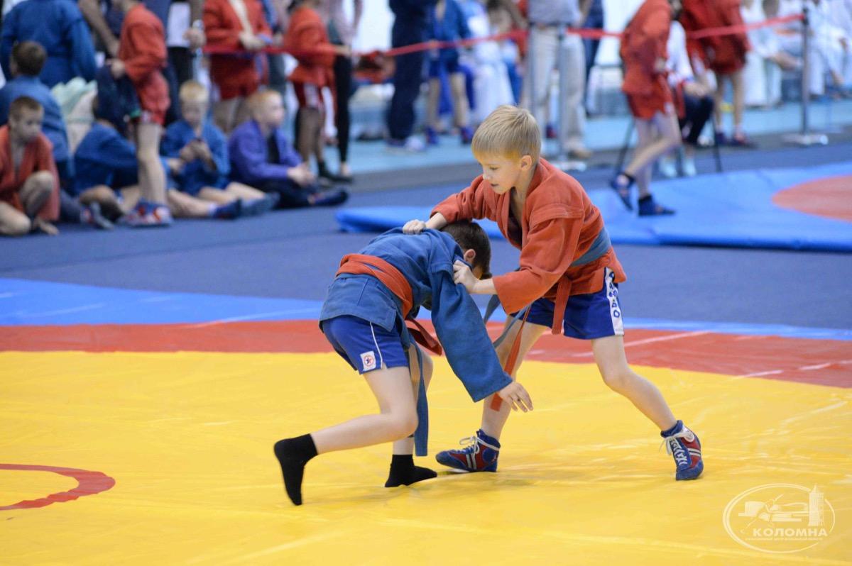 Фестиваль спортивной борьбы посвятили Дню России