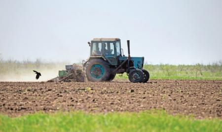 Информация по ходу весенних полевых работ на территории Коломенского городского округа