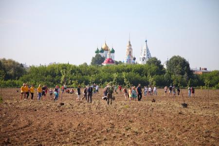 В Коломне посадили «Сад памяти»