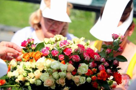 В Подмосковье на фестивале цветов высадят рекордное количество цветов и растений