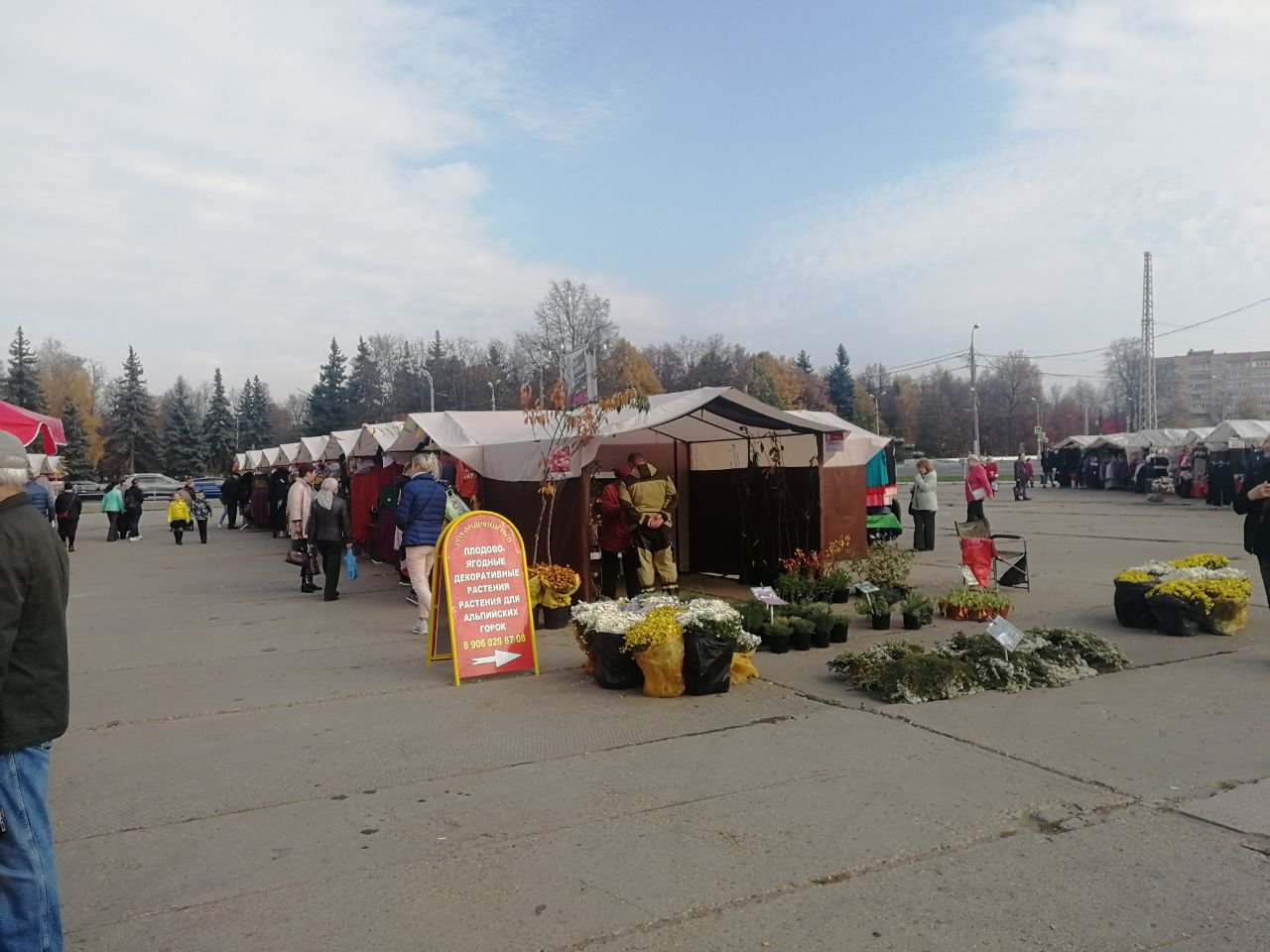Новости Коломны   В Коломне завершилась недельная ярмарка Фото (Коломна)   iz zhizni kolomnyi