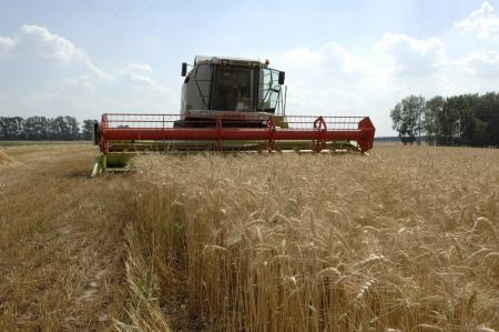 Подмосковное правительство будет поддерживать фермеров и в 2019 году