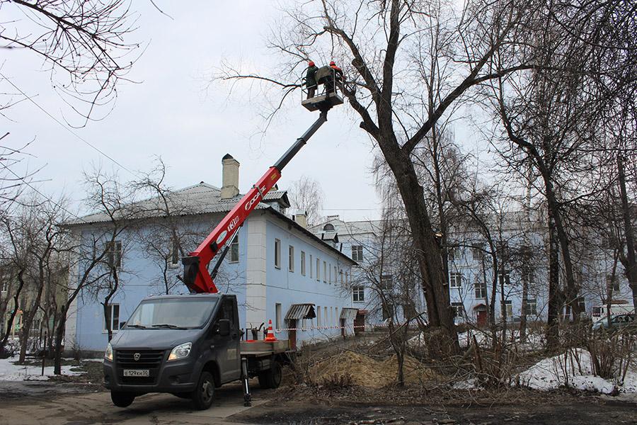 Санитарная обрезка деревьев – от Щурово до Колычево