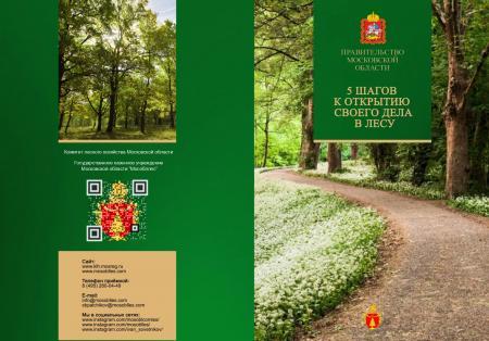 5 шагов к открытию своего дела в лесу
