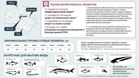 О запрете рыбной ловли в период нереста