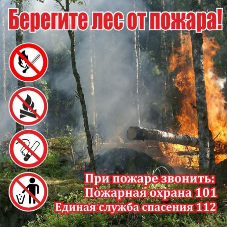 В майские праздники в подмосковных лесах усилят меры пожарной безопасности