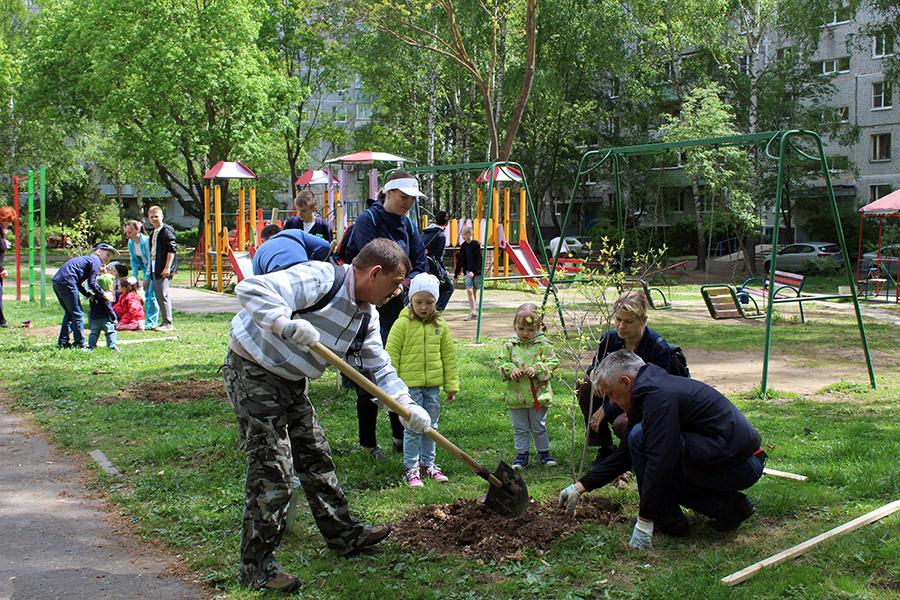 Коломенцы пришли на акцию «Лес Победы» семьями