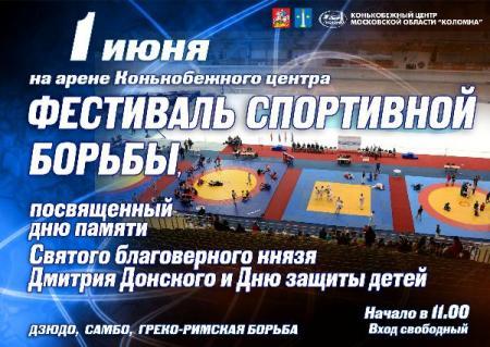 Фестиваль спортивной борьбы