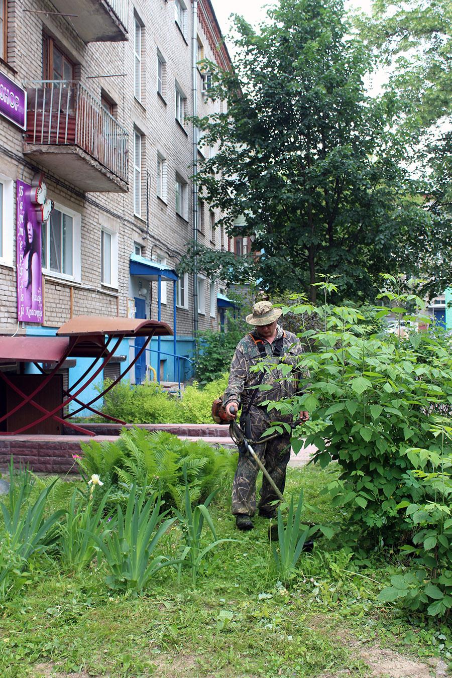 Новости Коломны   Коммунальщики проводят окос травы на придомовых территориях Фото (Коломна)   iz zhizni kolomnyi