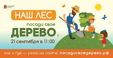 Акция «Наш лес. Посади свое дерево» пройдет на 14 площадках Коломенского городского округа