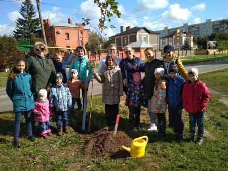 Общественная палата поддержала акцию «Наш лес. Посади свое дерево»