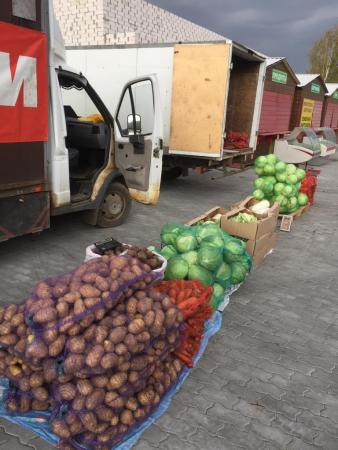 Коломенские аграрии приглашают на ярмарку