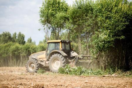3000 гектар земель введут в сельхозоборот до конца года в Коломенском городском округе