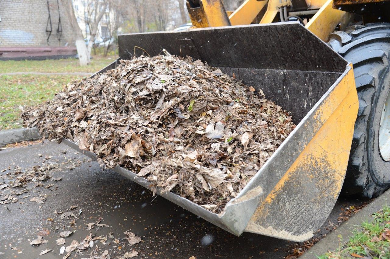 Новости Коломны   Новый подход к уборке опавшей листвы рассматривают в Коломне Фото (Коломна)   iz zhizni kolomnyi