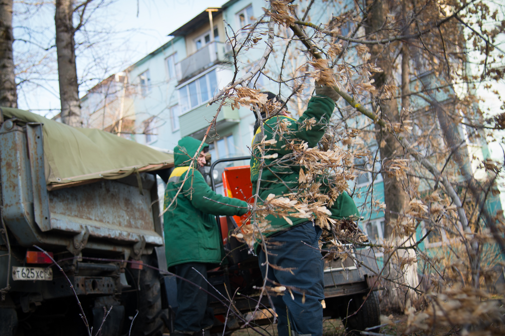 Новости Коломны   Активная пора кронирования деревьев наступила для коломенских коммунальщиков Фото (Коломна)   iz zhizni kolomnyi