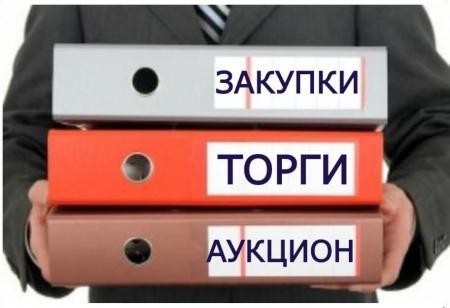 Сведения о результатах осуществления деятельности Контрольно-счетной палаты по аудиту в сфере закупок в I полугодии 2019 года