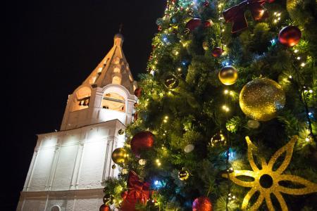 Более 50 искусственных и живых елей украсили в преддверии праздника в Коломенском городском округе