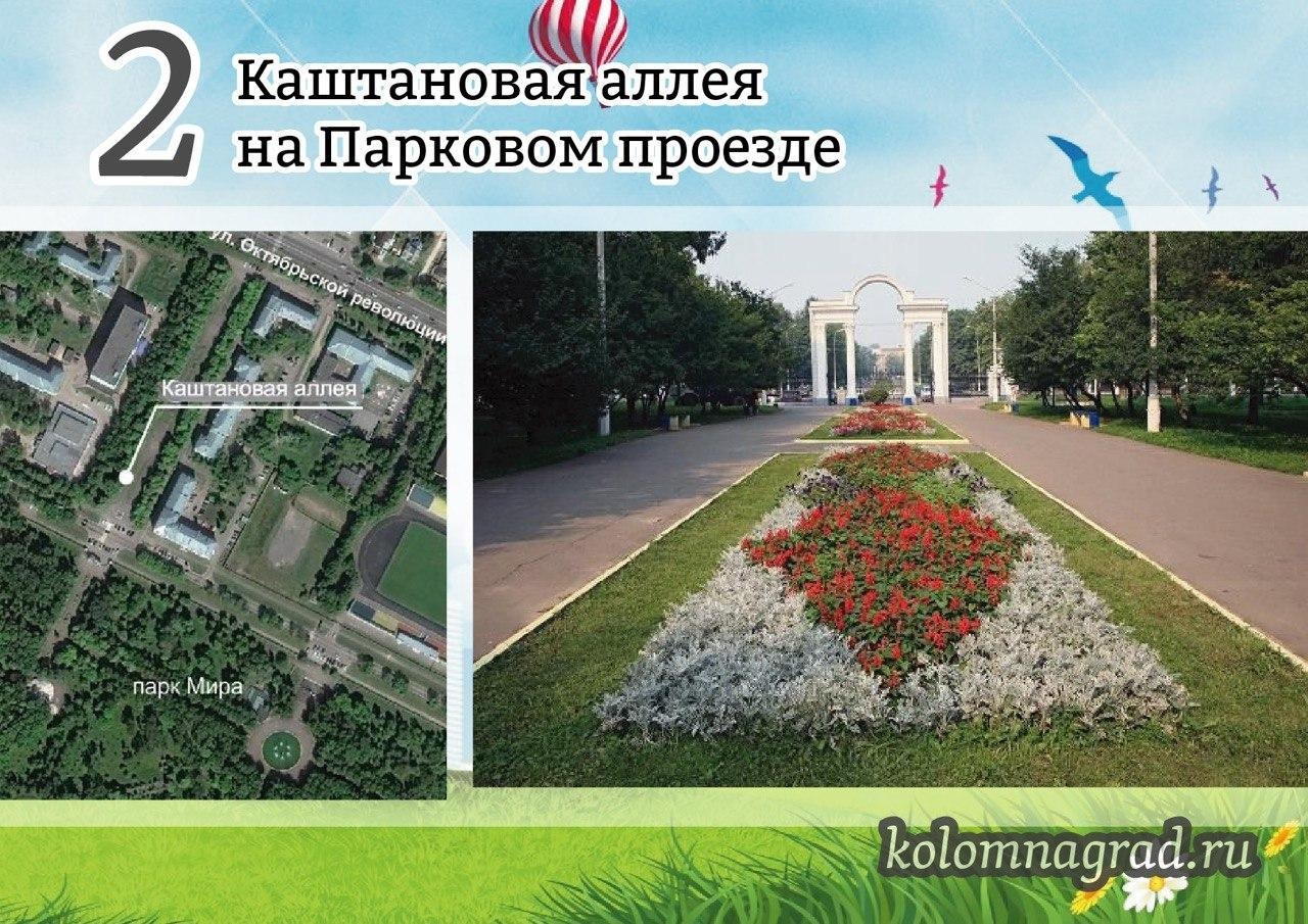 Новости Коломны   Продолжается голосование по выбору зоны для благоустройства Фото (Коломна)   iz zhizni kolomnyi