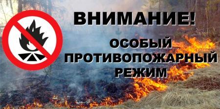 С 29 марта 2020 года на территории Коломенского городского округа Московской области установлен особый противопожарный режим