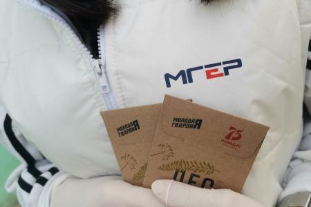 Подмосковные молодогвардейцы присоединились к всероссийской акции МГЕР «Лес героев»
