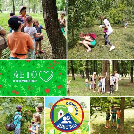 Коломна, Юные экологи изучили коломенские деревья и кустарники
