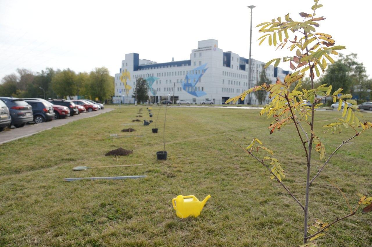 Коломенские полицейские присоединились к акции «Наш лес. Посади свое дерево»