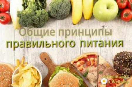 Обучающие (просветительские) программы по вопросам здорового питания для различных групп населения