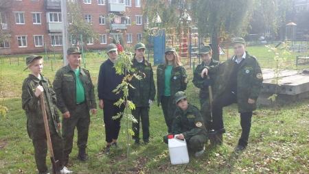 Коломенские школьники поучаствовали в акции «Наш лес. Посади своё дерево»