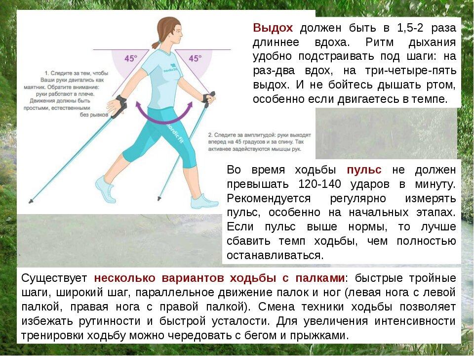 Пожилые жители Подмосковья могут посетить онлайн лекцию «Как поддержать здоровье суставов с помощью скандинавской ходьбы»