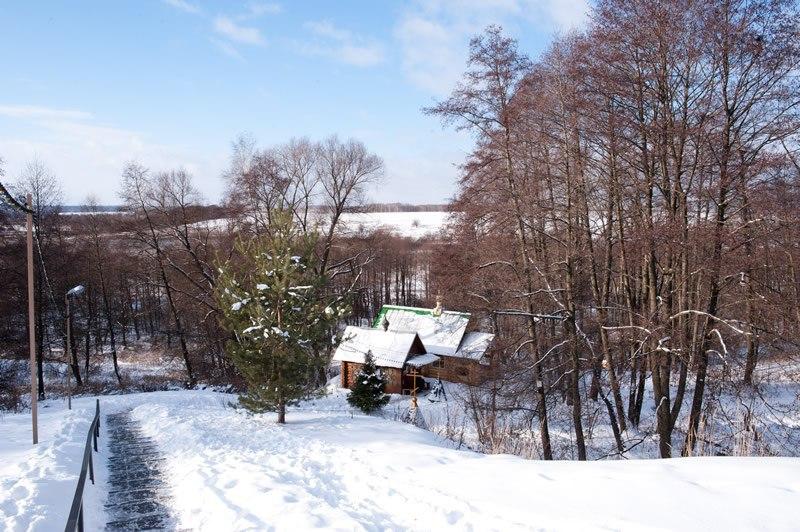 Святой источник в Андреевском станет центральной площадкой для купаний в Коломне