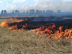 Жителям Городского округа Коломна напоминают о запрете сжигания сухой травы