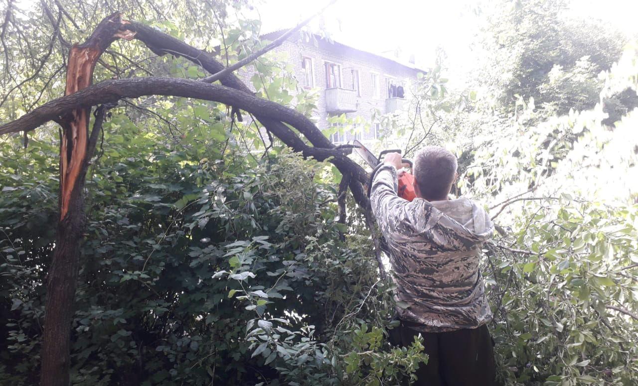 Департамент городского хозяйства устраняет последствия ночного ураганного ветра